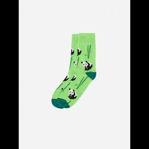 Kolorowe skarpetki - Pandzia
