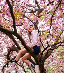 Kolorowe skarpetki - Cherry Blossom