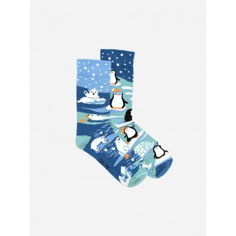 Kolorowe skarpetki - Pingwiny