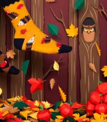Kolorowe skarpetki - Apple Hedgehog